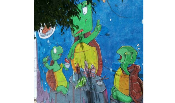 """Bức ảnh """"bữa ăn của rùa"""" chỉ gồm chai nhựa, túi ni lông và rác."""