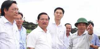 Ông Nguyễn Viết Vy, Bí thư Huyện đảo Lý Sơn