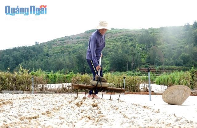 Với đặc thù sản xuất nông nghiệp của huyện đảo, chính quyền địa phương cần sớm triền khai thực hiện phương án thu gom, xử lý đất thải