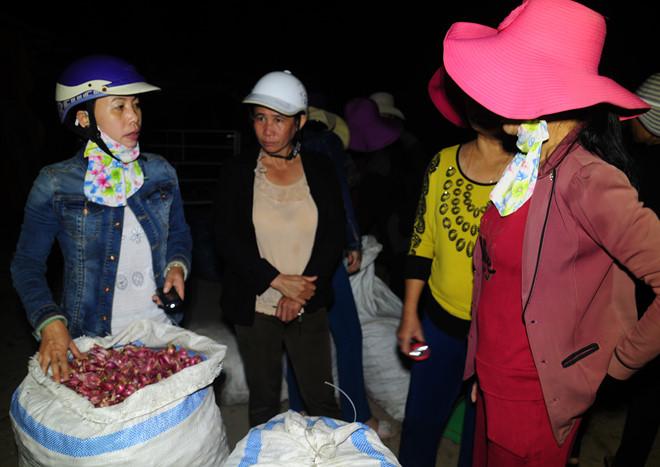 Nông dân Lý Sơn đưa củ hành tím ra bán ở phiên chợ sớm.