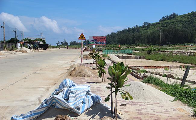 Các công trình xây dựng mới ngày càng trồng thêm nhiều cây xanh