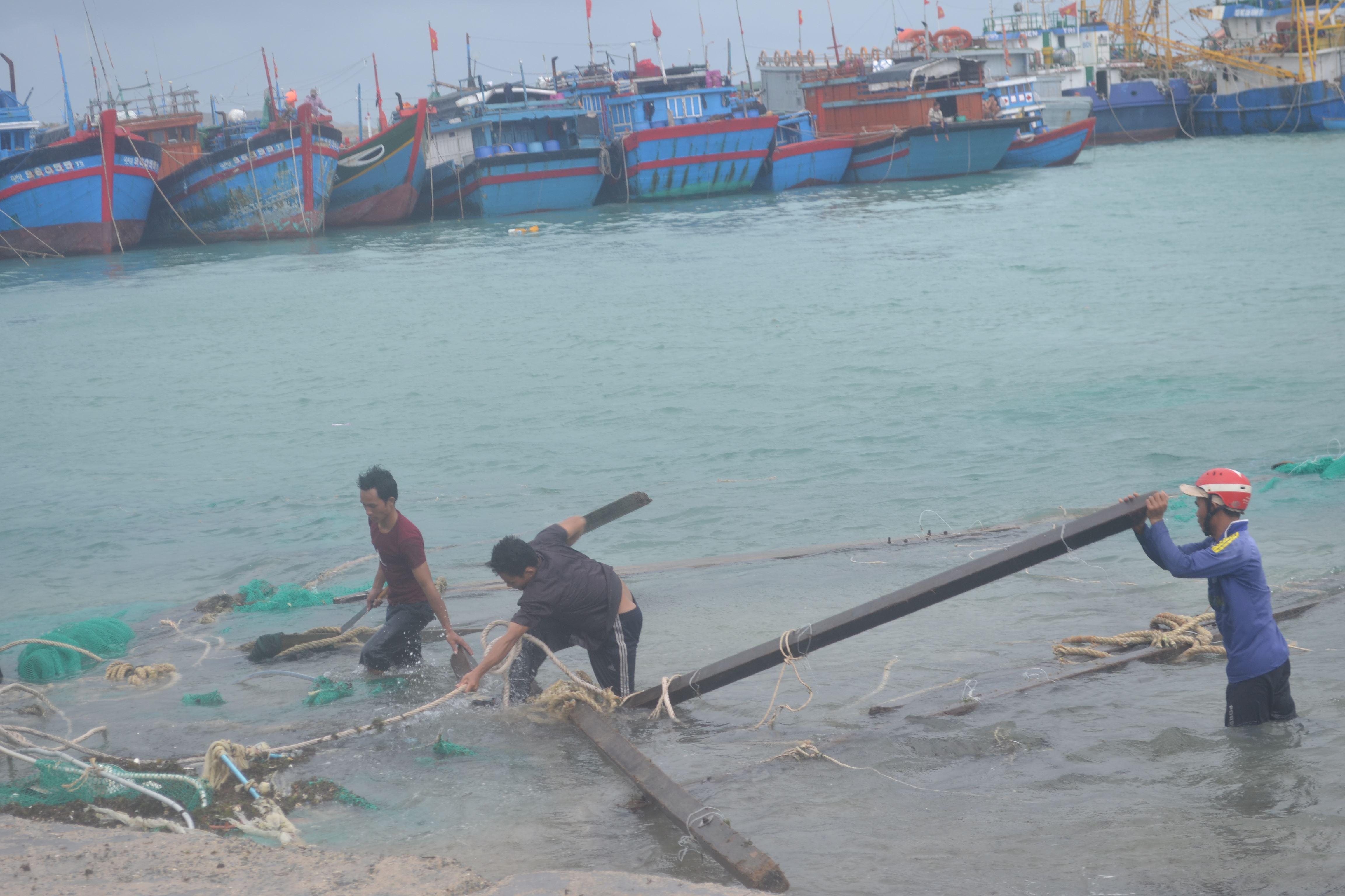Hàng chục lồng bè nuôi tôm, cá của người dân Lý Sơn tan tành sau bão.