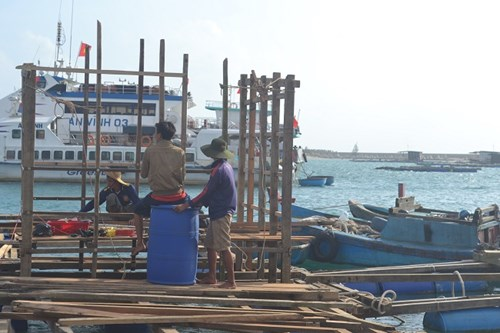 Các hộ nuôi trồng thủy sản Lý Sơn sửa chữa đóng mới lồng bè để khôi phục sản xuất.
