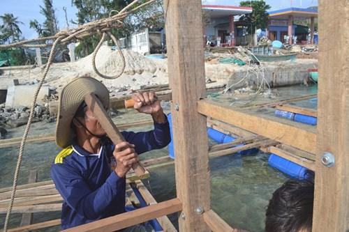 Người dân sửa chữa đóng mới lồng bè để khôi phục nuôi tôm hùm,cá bớp