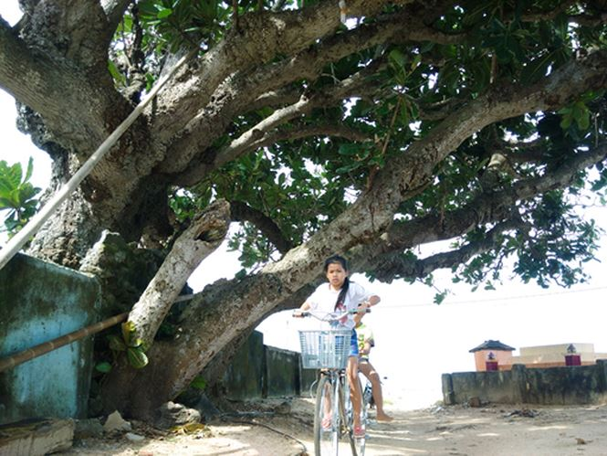 ly son xay resort 4