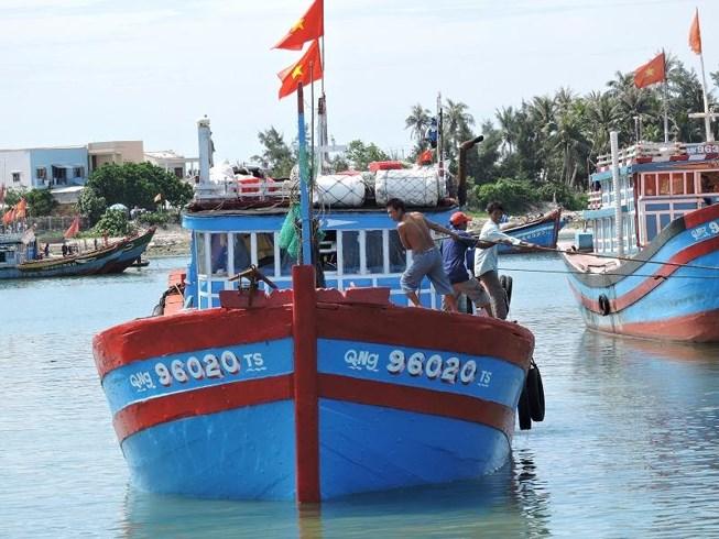Ngư dân đảo Lý Sơn, Quảng Ngãi cho tàu cập bờ đón Tết. Ảnh: PHẠM MỊNH