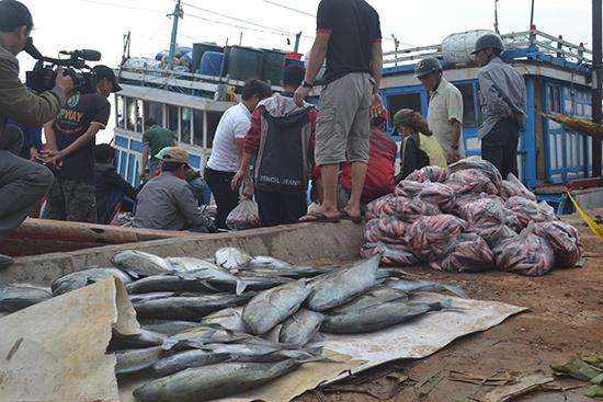Tàu cá ngư dân Lý Sơn mang đầy khoang tôm cá cập cảng để đón Tết.