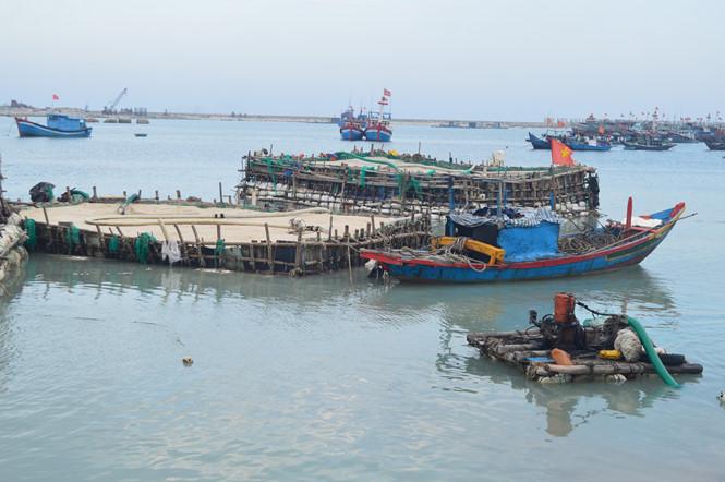 Những bè cát được thợ lặn Lý Sơn khai thác giữa biển kéo vào bờ bán cho nông dân ẢNH: HIỂN CỪ