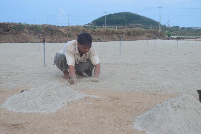 Nguồn cung không đủ cầu nên giá cát san hô ở Lý Sơn mỗi năm một tăng