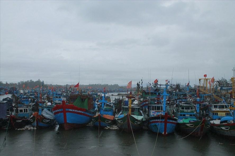 Còn 1.160 tàu cá ngư dân Quảng Ngãi chưa vào bờ trú bão.