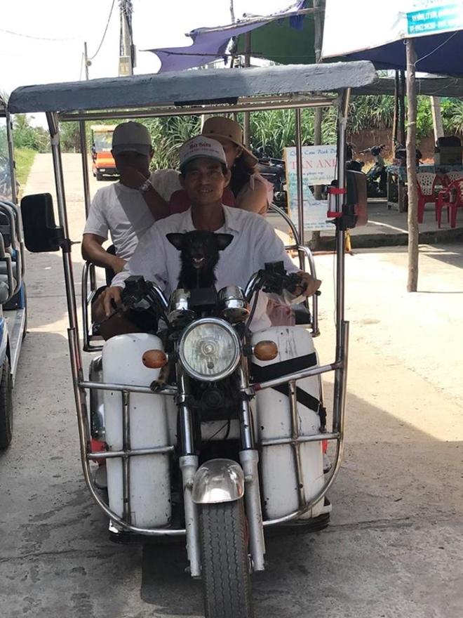 Taxi điện, một sáng kiến du lịch đem lại thu nhập cho người dân đảo Bé (huyện đảo Lý Sơn).