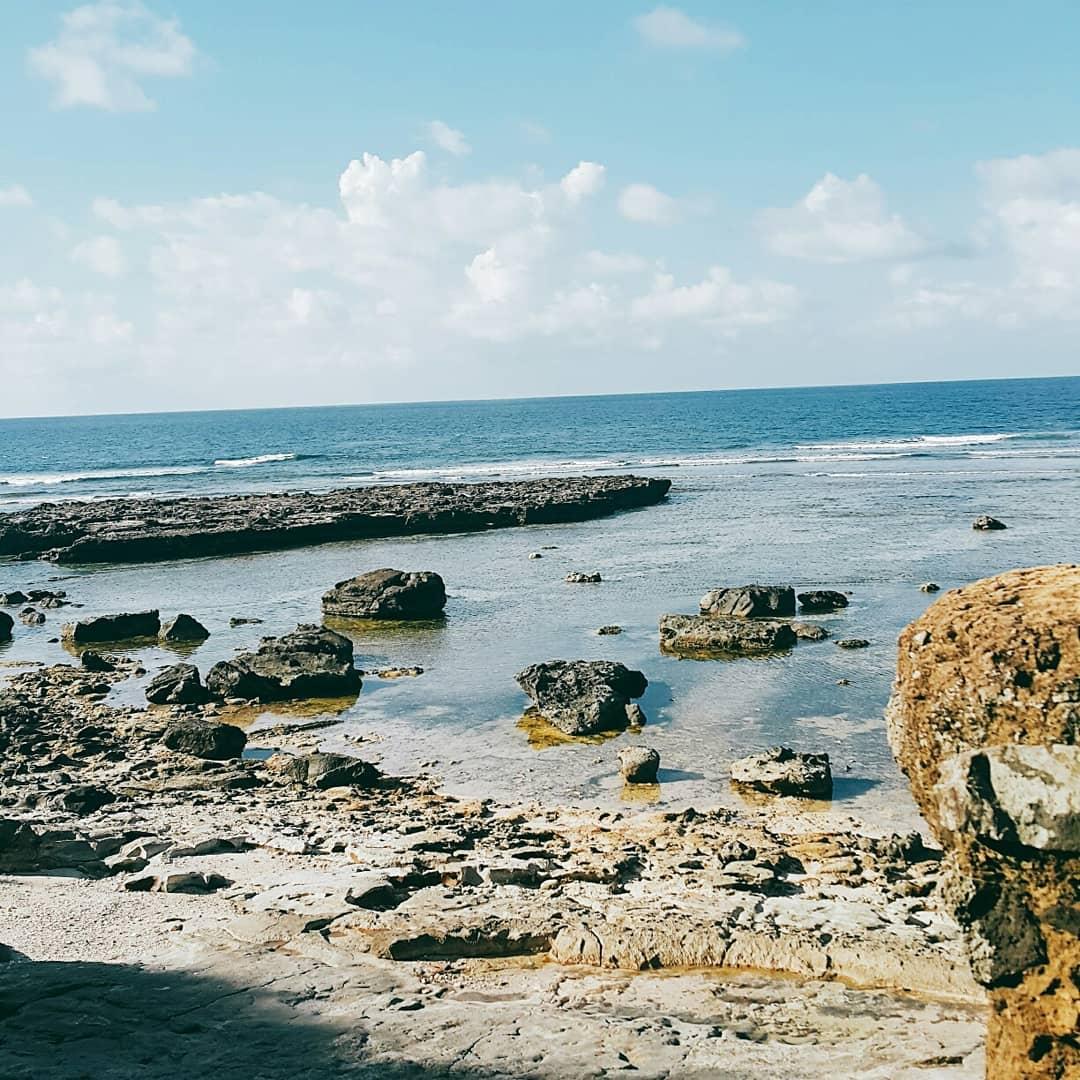 di vết của đường bờ biển cổ