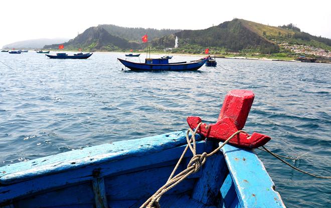 Ngư dân neo đậu tàu thuyền công suất nhỏ hành nghề lặn bắt ốc và nhum biển ở huyện đảo Lý Sơn.