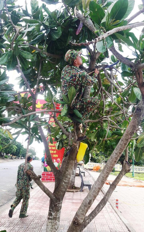 Bộ đội tập trung tỉa cây chống bão ở huyện đảo Lý Sơn.