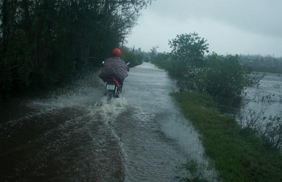 Một khu vực ngập tại thôn Châu Me, xã Bình Châu, huyện Bình Sơn