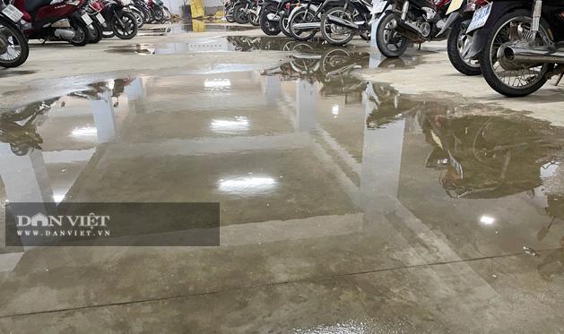 Nước đọng thành vũng ở khu để xe.
