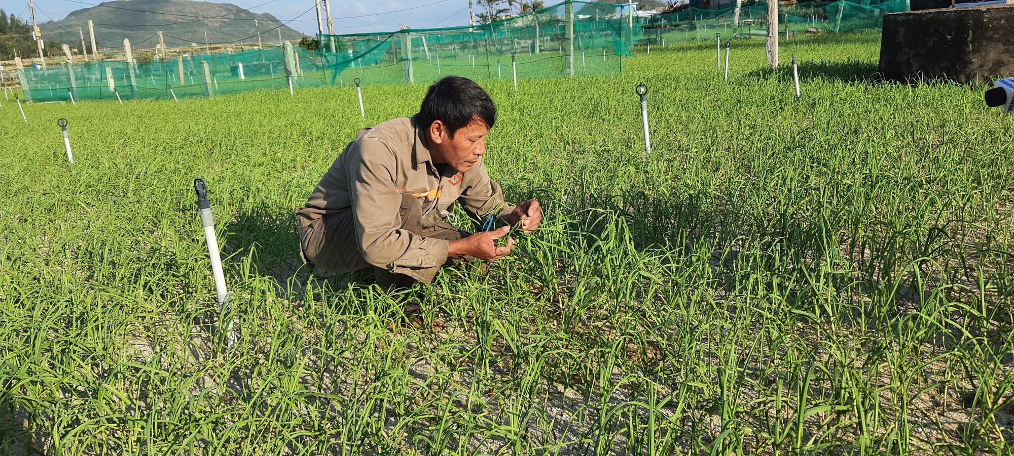 Ông Bùi Kim Hoanh vui mừng khi được Agribank gia hạn nợ.