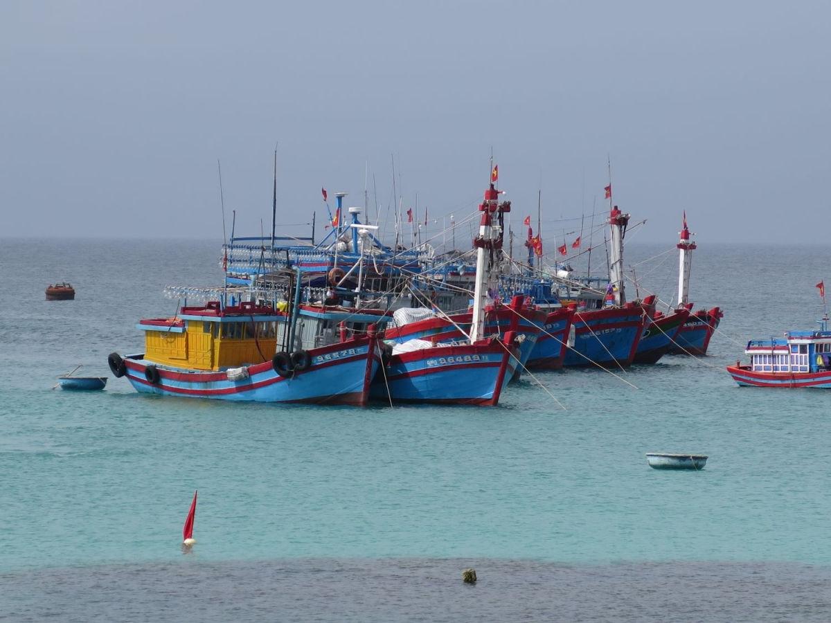 Lý Sơn tạm dừng lễ ra quân đánh bắt hải sản đầu năm