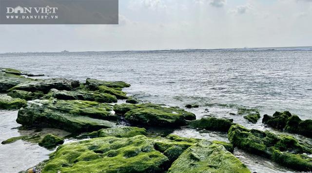 Rất nhiều du khách đi du lịch sau Tết đến đảo Lý Sơn đã bị mê hoặc trước vẻ đẹp của nó.