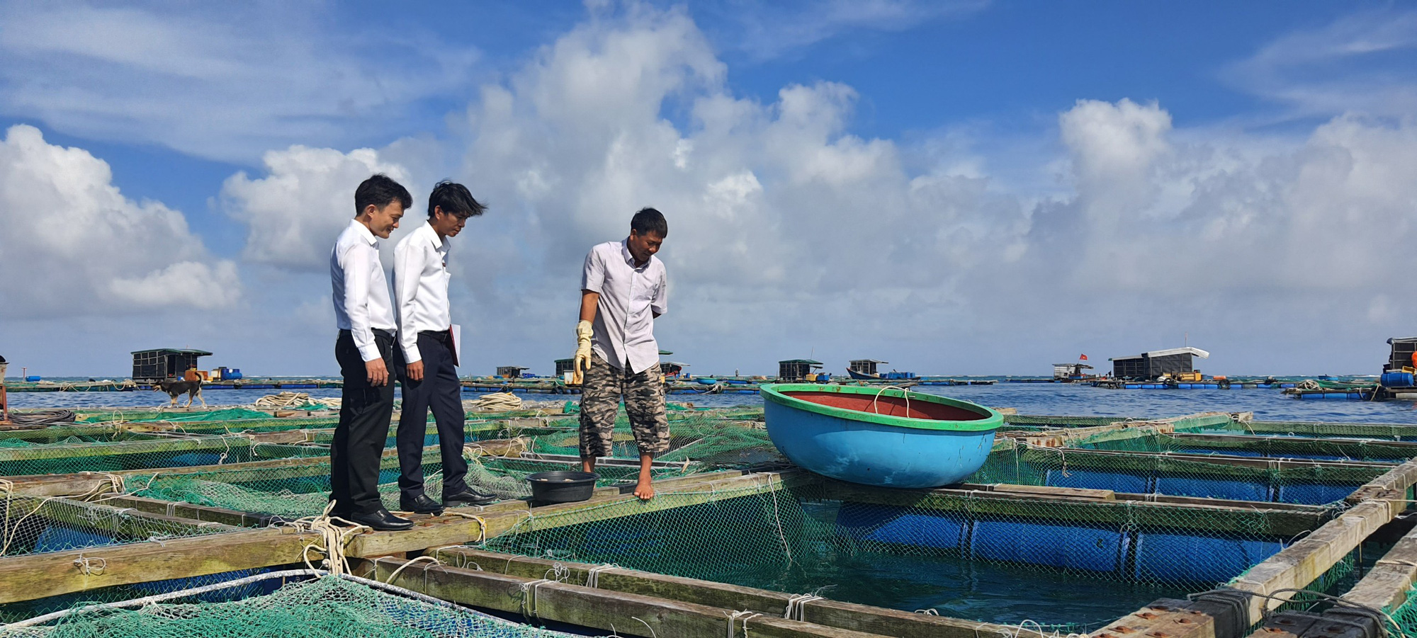 Ông Thảo đã đổi đời nhờ mô hình nuôi cá lồng bè (cá bớp).