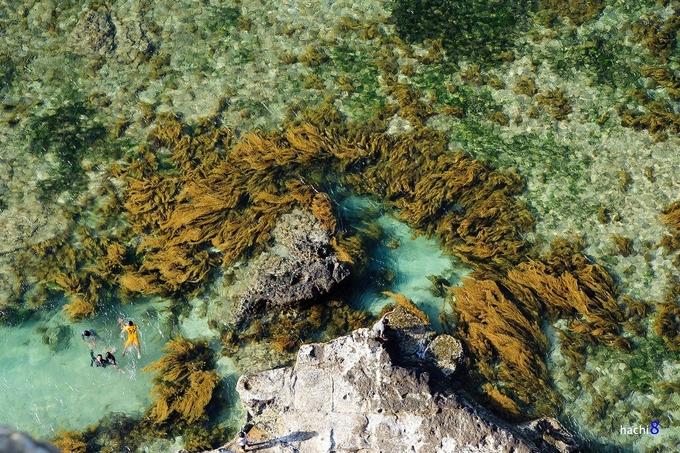 Nước biển ở Lý Sơn khó có thể lẫn với các nơi khác bởi màu xanh ngọc bích. Hòa mình vào làn nước biển xanh trong này là trải nghiệm không thể bỏ qua khi đến Lý Sơn. Ảnh: Hachi8