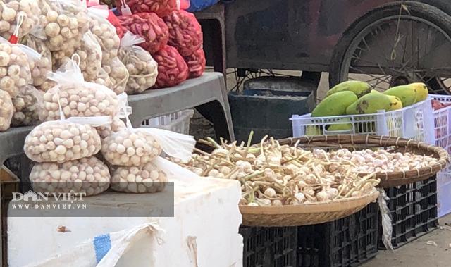 Một góc quày bán tỏi ở Lý Sơn.