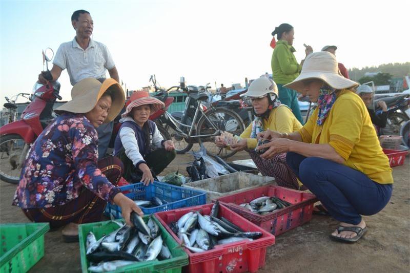 Phiên chợ cá không chỉ là nơi buôn bán, gặp gỡ, giao lưu tình cảm của phụ nữ miền biển mà còn là nét đẹp văn hóa của cư dân vùng biển đảo Lý Sơn.