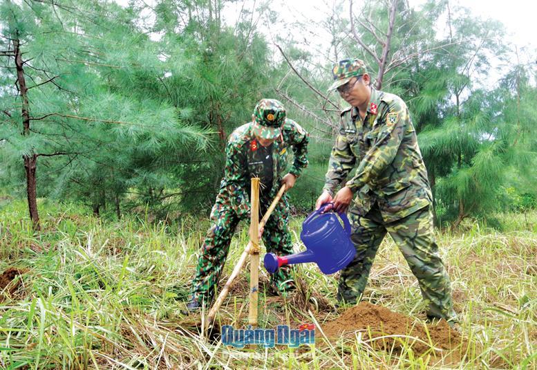 Cán bộ Ban CHQS huyện Lý Sơn trồng và chăm sóc rừng trồng.