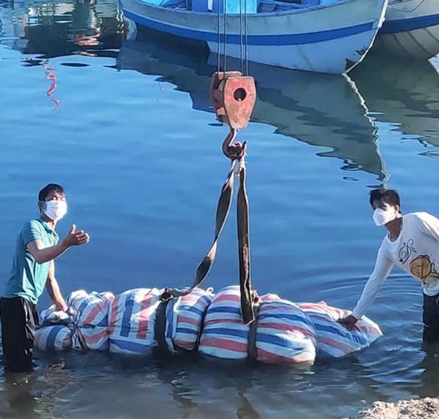 an tang ca ong 700kg 3
