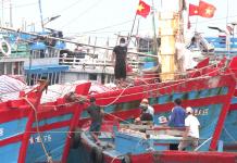 Tàu thuyền về bờ để tránh trú bão số 5.